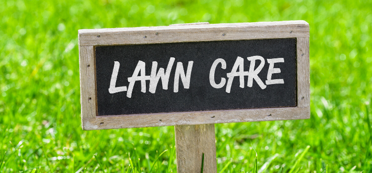 How To Achieve A Perfect Lawn