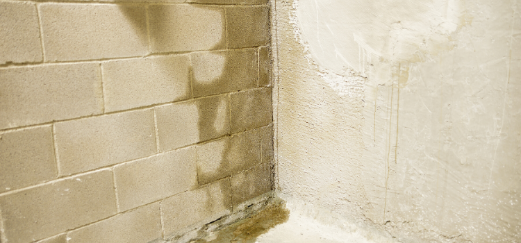 5 Things You Can Do To Keep Your Basement Dry