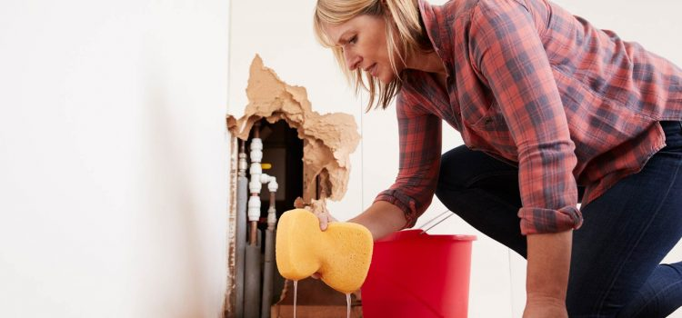 What Causes Water Damage In Homes?