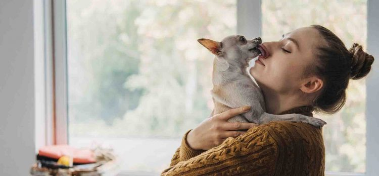 5 Surprising Reasons Why Dog Socialization Is Important